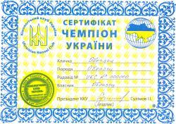 Сертификат Чемпиона Украины