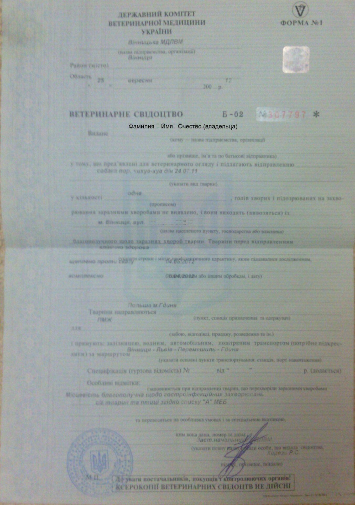 Ввоз собак за границу правила, документы, справки