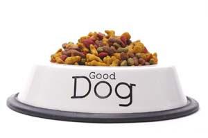 Домашний сухой корм для собак
