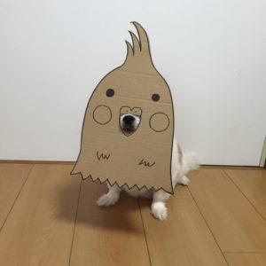 костюм из картона для собаки - птичка