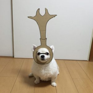 костюм из картона для собаки - принцесса