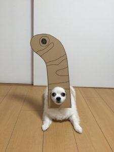 костюм из картона для собаки - червячек