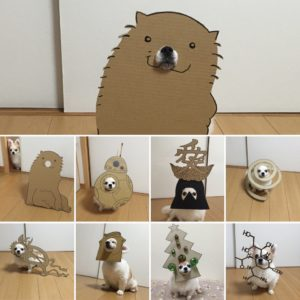 костюм из картона для собаки - коллаж