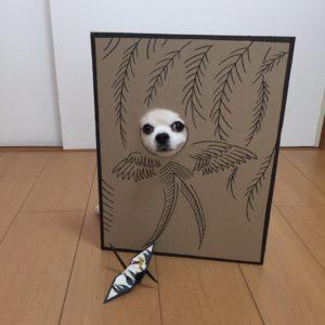 костюм из картона для собаки - феникс