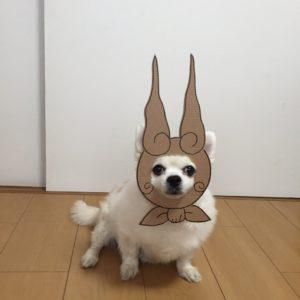 костюм из картона для собаки - бабушка